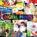 Baumwolljersey Digitaldruck