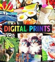 Jersey Cotton Fabric Digital Print